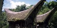 Tongkonan rumah adat suku Toraja