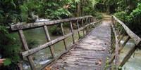 jembatan air terjun moramo
