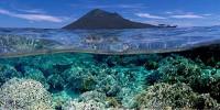 keindahan taman laut bunaken