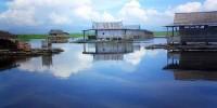Keindahan Danau Tempe