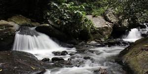 Taman Wisata Wera Sulawesi Tengah