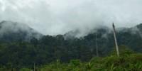 Bogani Nani Wartabone Sulawesi