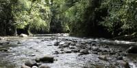 Sungai Bogani Nani Wartabone Sulawesi